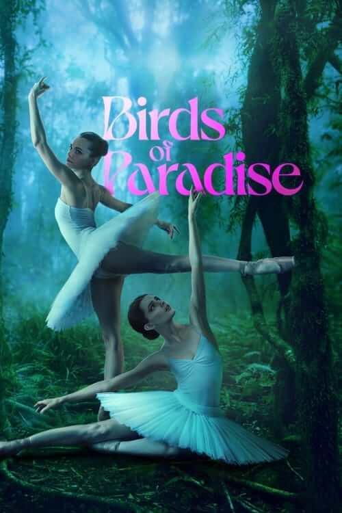 Aves del paraíso (Birds of Paradise)