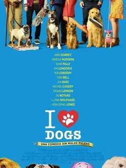 dog days / Días perrunos