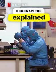 El Coronavirus En Pocas Palabras