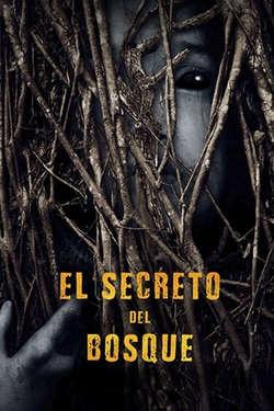 El Secreto del Bosque / Behind the Trees
